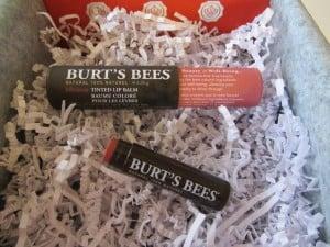 Burt´s Bees Tinted Lip Balm in Hibiskus