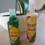 Testbiene topft um mit Seramis - Teil 2 Orchidee
