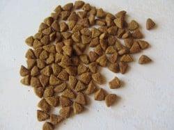 Produkttest Purina One Sterilcat