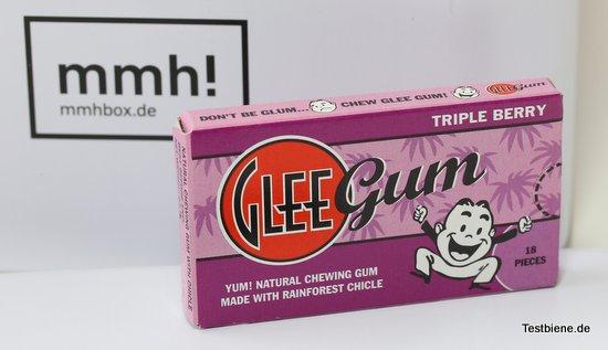 Glee Gum aus USA (18 St. / 22,5g)