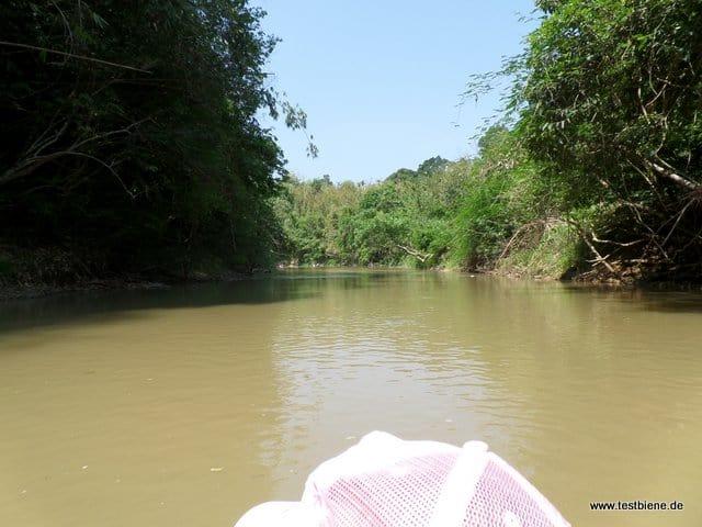 mit dem Kanu stundenlang auf dem Khao Sok - ein super Erlebnis